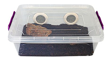 bug xl ultra bug terrestrial xl bugzarre co uk insect cages