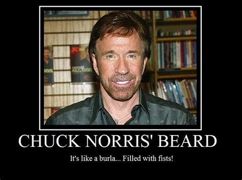 Chuck Norris Beard Meme - 94 best images about chuck jokes on pinterest friday