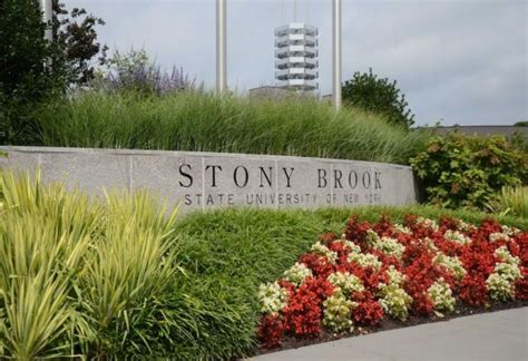 Mba Stony Brook Ranking by Alan Alda Launches Sixth Challenge Science