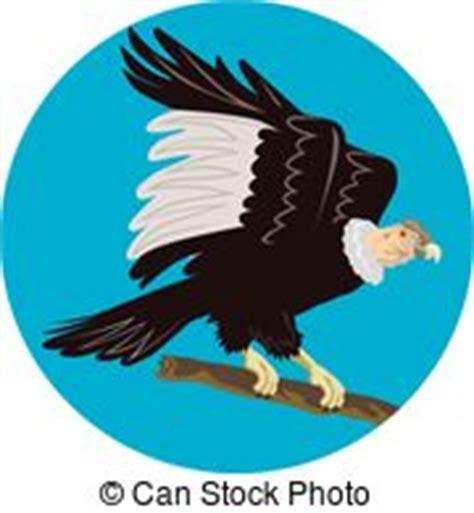 andean condor distribution royalty free andean illustrations and clip 454 andean royalty free