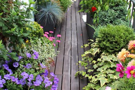orto sul terrazzo fai da te orto sul balcone donnad