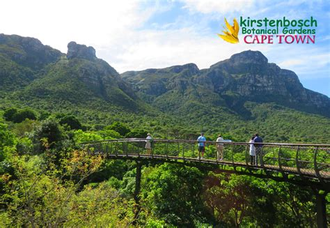 A Visit To Kirstenbosch Botanical Gardens Cape Town The Botanical Gardens Cape Town