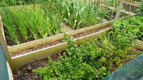 einen bauerngarten oder cottagegarten anlegen schritt f 252 r