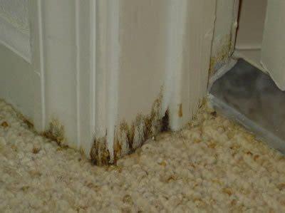 Moisture Barrier For Concrete Floor by Concrete Moisture Problems The Concrete Network