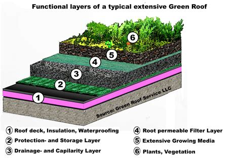 green roof design by spanish based firm on a architects green roofs