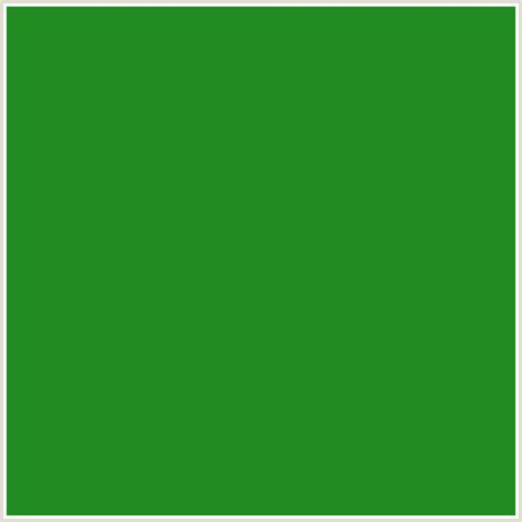 hex forest green 228b22 hex color rgb 34 139 34 forest green green
