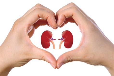 alimenti aproteici per insufficienza renale l esperto risponde dieta e insufficienza renale cronica