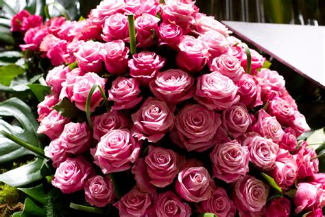 most beautiful flower bouquets hot girls wallpaper images of hot pink roses bouquet idea