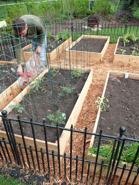 Vegetable Garden Box Vegetable Garden Box Diy Gardens Raised Beds And The Box