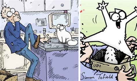 simons cat off to simon s cat off to the vet new book and behind the scenes video film books entertainment