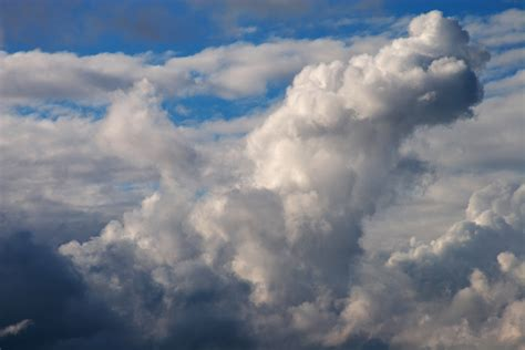 techin5 a guide to cloud google and microsoft apart