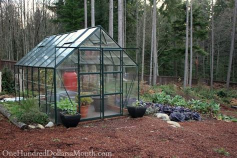 backyard greenhouse winter mavis butterfield backyard garden plot pictures week