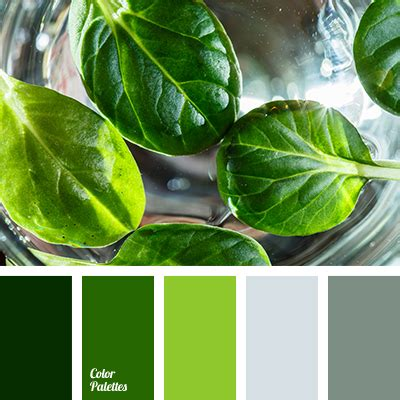 what color matches green basil color color matching color of basil leaves dark