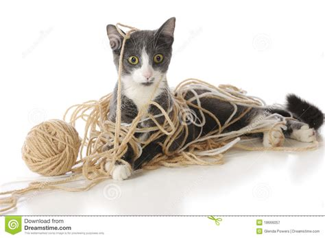 Tangled Up tangled up stock image image of isolated 18666057