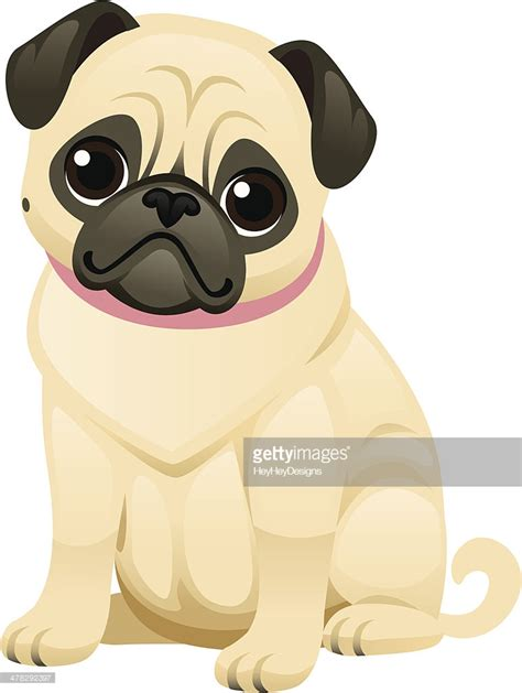 pug vector free pug vector getty images
