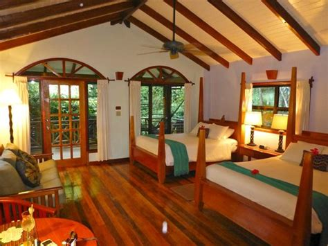 treehouse room picture of hamanasi adventure and dive