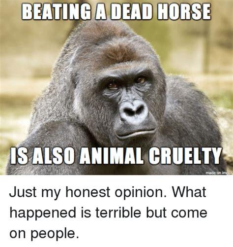 Beating A Dead Horse Meme - honest opinion meme driverlayer search engine