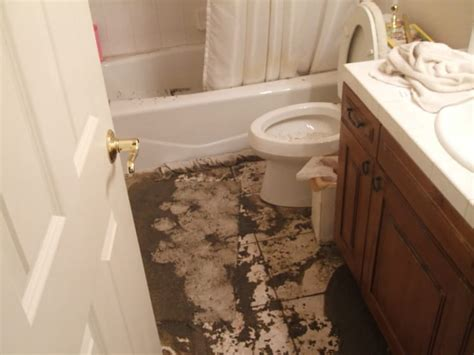 Plumbing Stoppage by 6 Best Tips You Must Follow To Reduce Sewer Backups
