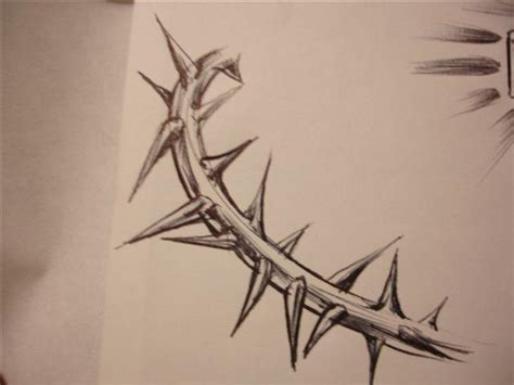 thorn sketch by chicanochop on deviantart