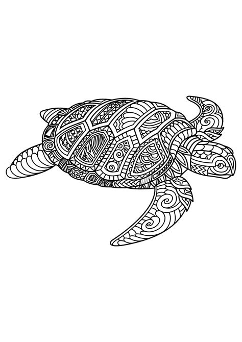intricate turtle coloring page free book turtle turtles coloring pages for adults