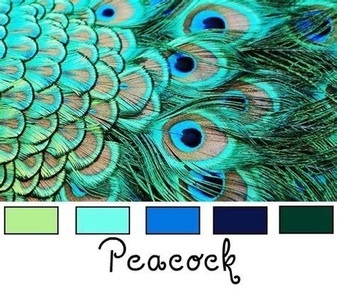 peacock colors top 25 best peacock color scheme ideas on