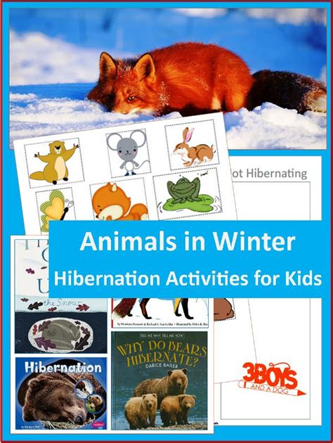 the winter station books 1000 images about books on animal hibernation for