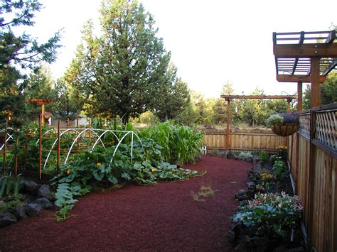 Vegetable Gardening Garden Beautiful Beautiful Vegetable Garden Pictures