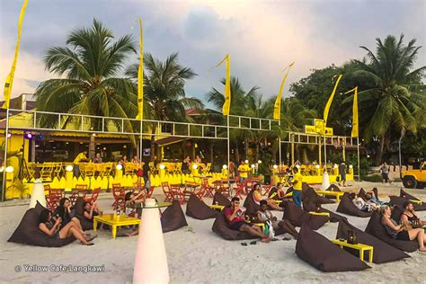 yellow cafe hammocks on the