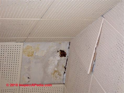 Pictures Of Asbestos Ceiling Tiles by Asbestos Ceiling Tile Faqs