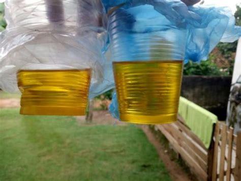 Minyak Makan mahasiswa kkn unila inovasi biji karet jadi minyak makan nabati jejamo