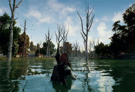 pubg ads pubg hit with negative reviews following in game ads in