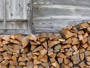 how to stack and season firewood patriot caller