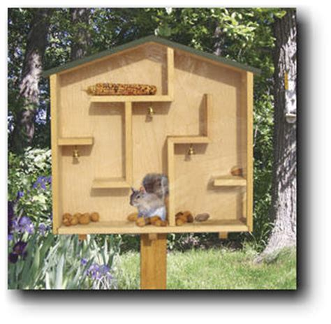 Squirrel Houses Plans A Mazing Squirrel House Woodworking Plans