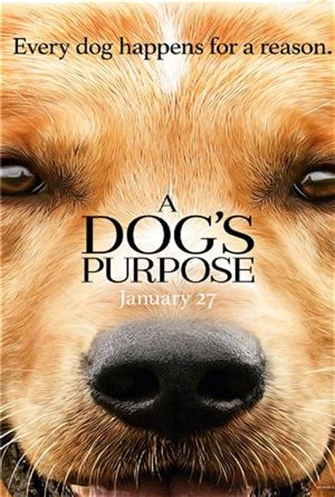 a s purpose 2017 a s purpose 2017 1080p 1920x804 with torrent