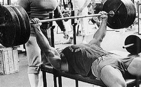 ivan putski bench press incline arnold press for a big bench arnold schwarzenegger