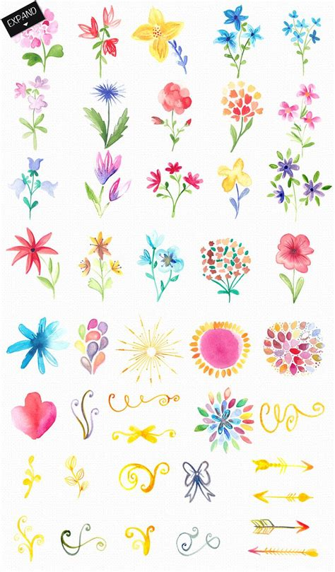 best 25 watercolor flowers ideas on flower watercolor painting flowers and painted