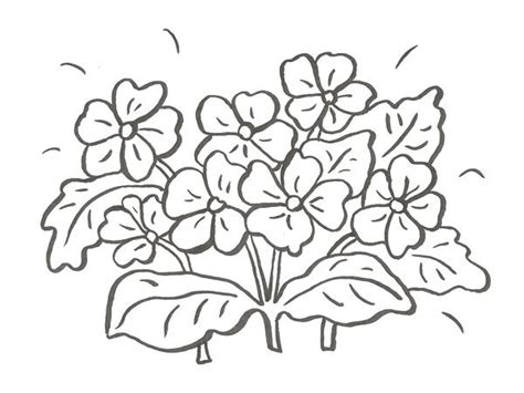 imagenes para pintar lindas mira estos 5 dibujos de flores para pintar ramos de flores