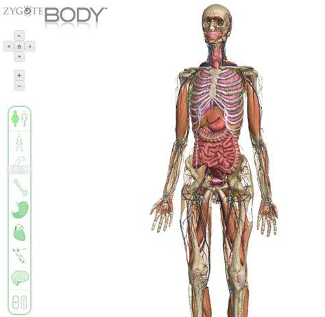 Imagenes En 3d Del Cuerpo Humano | explora el cuerpo humano en 3d con zygote body grupogeek