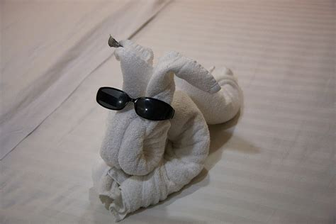 Origami Towels - 13 best images about towel origami on origami