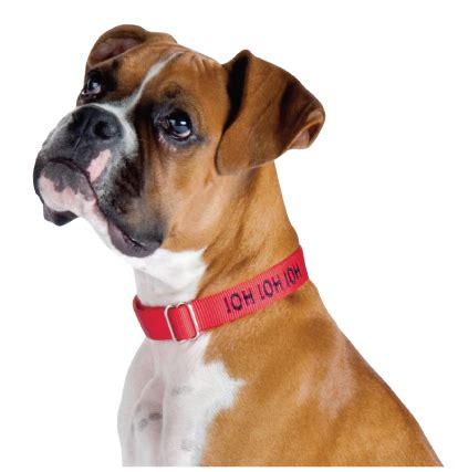 imagenes png de animales knino alimento premium para perros de todas las razas