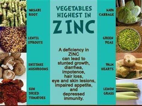 vegetables zinc 1000 images about healthy food on food