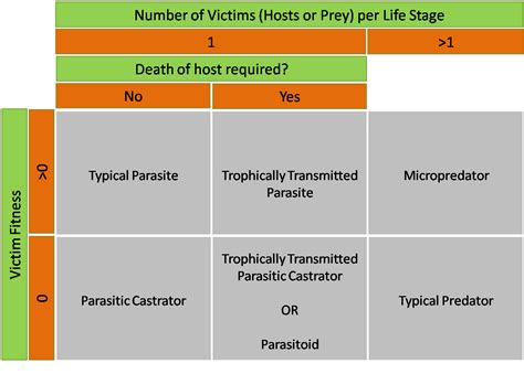 definition of pictorial diagram some definitions predator vs parasite vs parasitoid