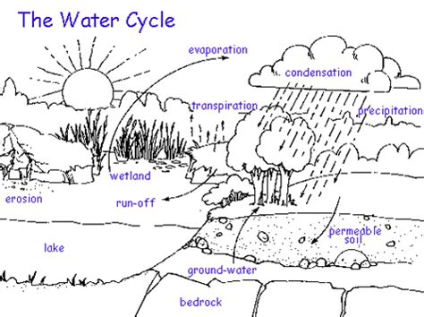 blank water cycle diagram printable the water cycle answers