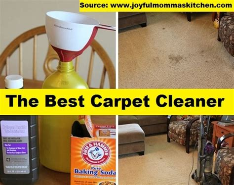 the best carpet cleaner home and tips