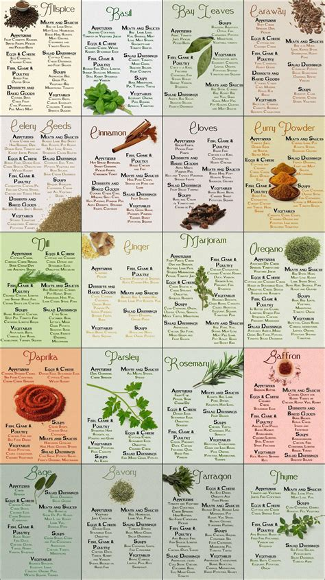 herb chart herb spice chart common sense evaluation