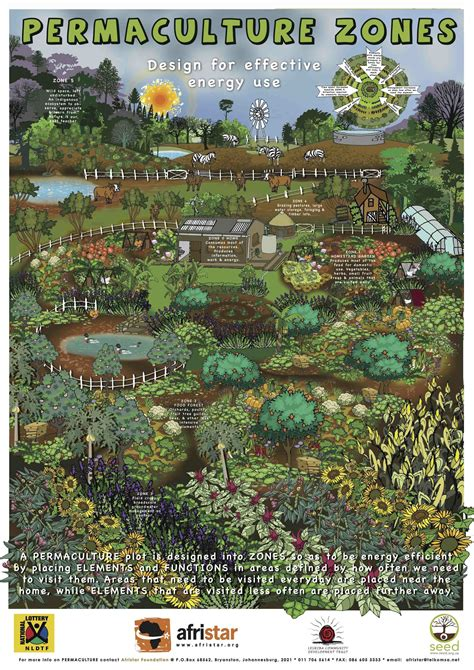 Permaculture Garden Layout Best 25 Permaculture Ideas On Pinterest Vegetable Gardening Vegetable Garden Planning And