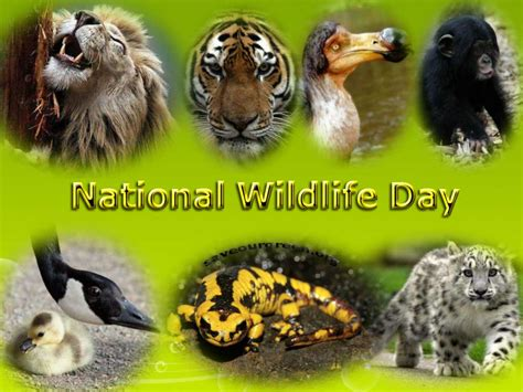 when is national day national wildlife day save our green