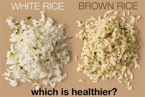 can dogs eat brown rice brown rice vs white rice which is healthier eat this autos post