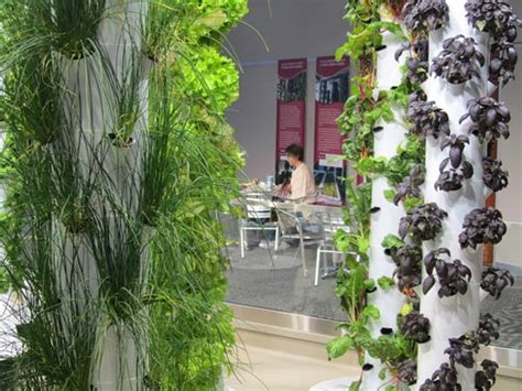 peek  ohare airports vertical farm urban gardens