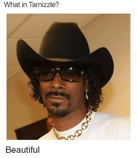 What Meme - what in tarnizzle beautiful meme on sizzle